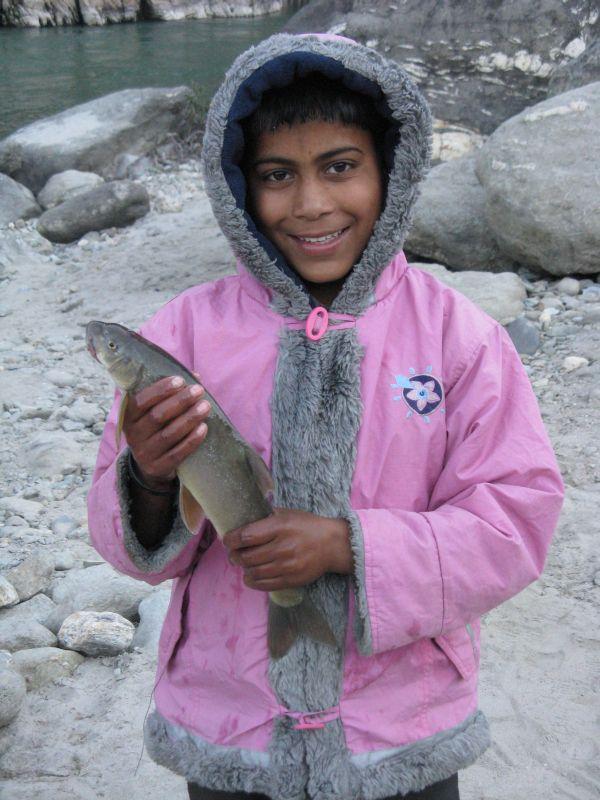 kiranfisch